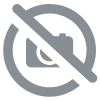Sorbet aux fruits de la passion